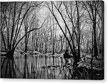 Dark Reflections Canvas Print by Colleen Kammerer