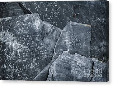 Dark Schist Blades Canvas Print