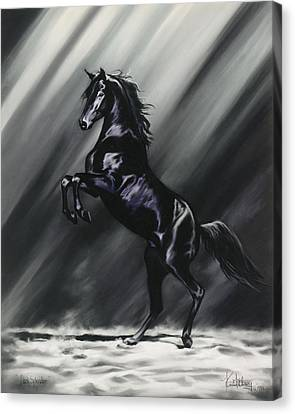 Dark Splendor Canvas Print by Kim McElroy