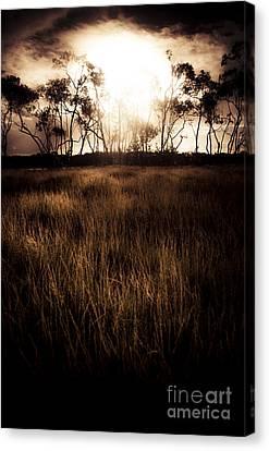 Dark Wetland Sunset Scene Canvas Print