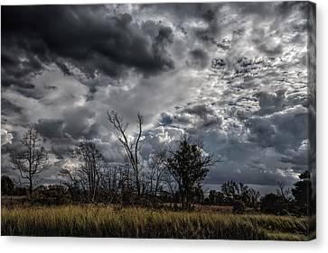 Darkened Skies Canvas Print