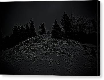 Darkscape Canvas Print by Timothy Hedges