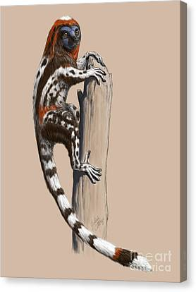 Darwinius Masillae Canvas Print by Julius Csotonyi