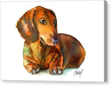 Daschund Puppy Dog Canvas Print by Christy  Freeman