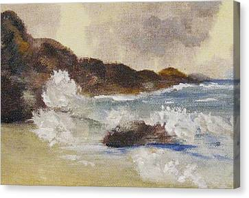 Canvas Print featuring the painting Dashing Waves by Trilby Cole
