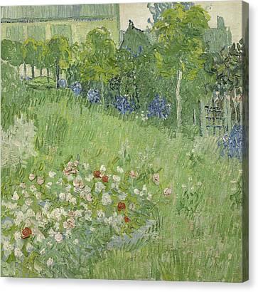 Dutch Landscapes Canvas Print - Daubigny's Garden by Vincent van Gogh