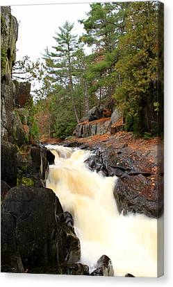 Dave's Falls #7277 Canvas Print