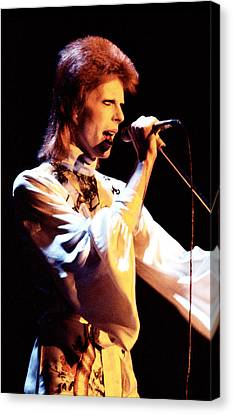 David Bowie 1973 Canvas Print by Chris Walter