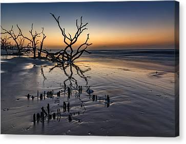 Dawn At Botany Bay Canvas Print