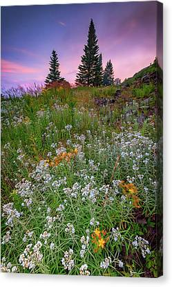 Canvas Print featuring the photograph Dawn At Height Of Land by Rick Berk