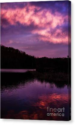 Canvas Print featuring the photograph Dawn Big Ditch Wildlife Management Area by Thomas R Fletcher
