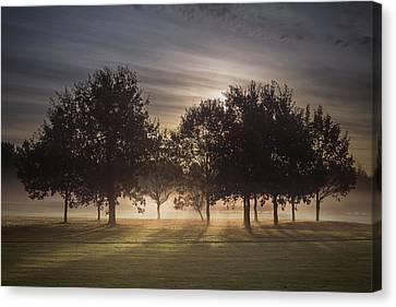 Dawn Canvas Print by Chris Fletcher