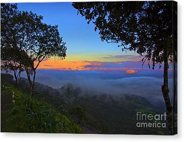 Dawn In The Cajas Range Of The Andes Canvas Print by Al Bourassa
