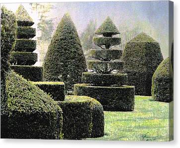 Dawn In A Topiary Garden   Canvas Print by Angela Davies