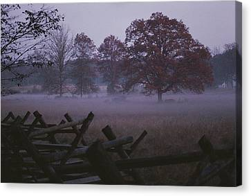 Dawn Mist Hangs Over A Field Bordered Canvas Print