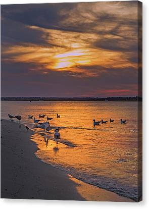 Dawn Of Sunset Canvas Print by Betsy Knapp