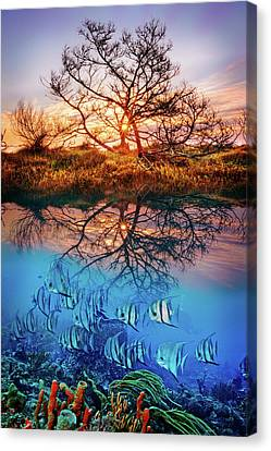 Canvas Print featuring the photograph Dawn Over The Reef by Debra and Dave Vanderlaan