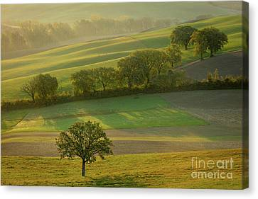 Canvas Print featuring the photograph Dawn Over Tuscany II by Brian Jannsen