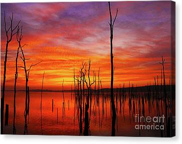 Dawns Approach Canvas Print