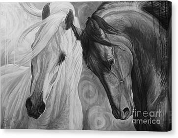 Grey Horse Canvas Print - Day And Night by Silvana Gabudean Dobre