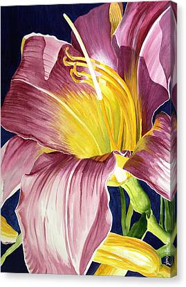 Day Lily In Sunlight Canvas Print by Janis Grau