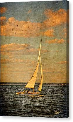 Cape Cod Canvas Print - Day Sail by Michael Petrizzo
