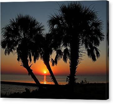 Canvas Print featuring the photograph Daybreak by Judy Vincent
