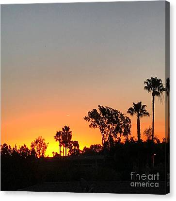Canvas Print featuring the photograph Daybreak by Kim Nelson