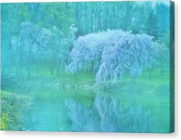 Foggy Day Digital Art Canvas Print - Daydream - Holmdel Park by Angie Tirado