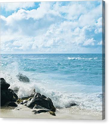 Canvas Print featuring the photograph Daydream by Sharon Mau