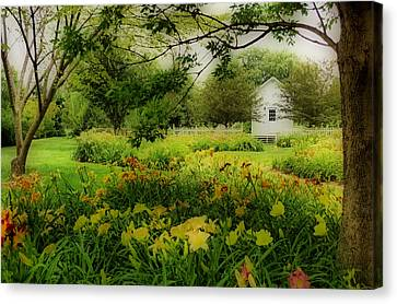 Daylilies In The Garden Canvas Print
