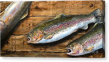 Day's Catch Canvas Print by Chad Berglund