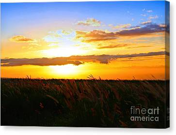 Canvas Print featuring the photograph Day's End by DJ Florek