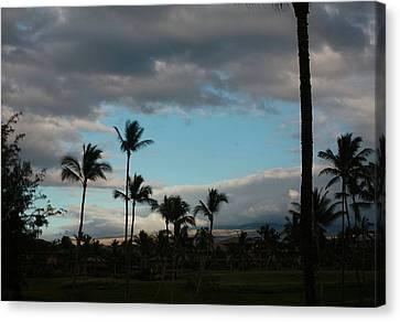 Days End Hawaii Canvas Print by Ellen O'Reilly
