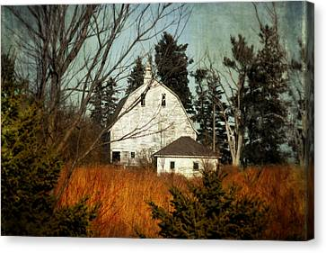 Days Gone By Canvas Print by Julie Hamilton