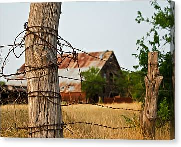 Days Gone By Canvas Print by Lisa Moore