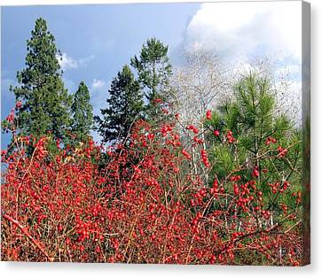 Canvas Print - Days Of Autumn 3 by Will Borden