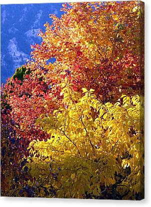 Canvas Print - Days Of Autumn 4 by Will Borden