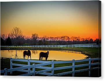 Days Ride Is Over Canvas Print by Randall Branham