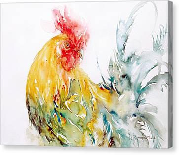 Dazzler Canvas Print