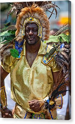 Dc Caribbean Carnival No 21 Canvas Print by Irene Abdou
