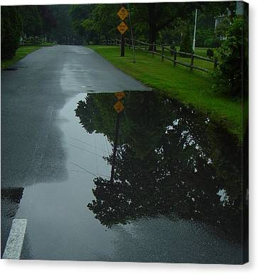 Dead End Puddle Canvas Print by Ron Sylvia