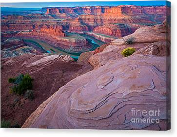 Twilight Views Canvas Print - Dead Horse Point by Inge Johnsson