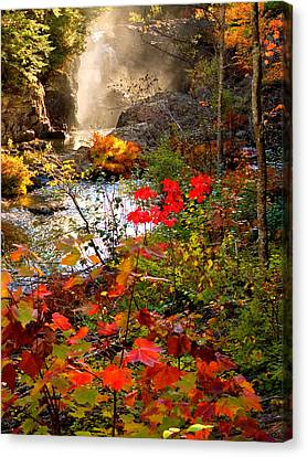 Dead River Falls Foreground Plus Mist 2509 Canvas Print by Michael Bessler