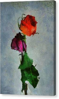 Canvas Print featuring the digital art Dead Roses by Francesa Miller