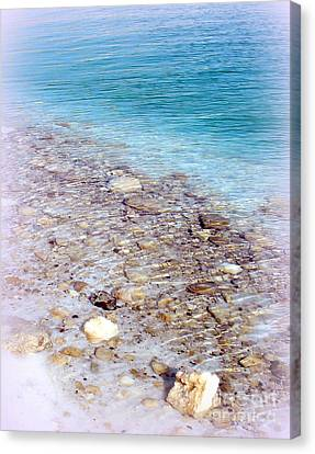 Dead Sea Living Water Canvas Print by Sabina Faynberg