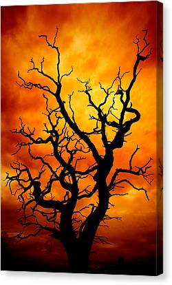 Frightening Canvas Print - Dead Tree by Meirion Matthias