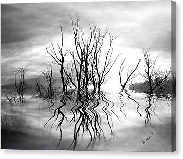 Canvas Print featuring the photograph Dead Trees Bw by Susan Kinney
