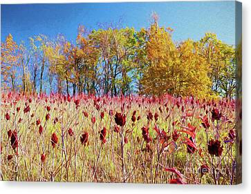 Deadly Beauty In The Blue Ridge Ap Canvas Print by Dan Carmichael
