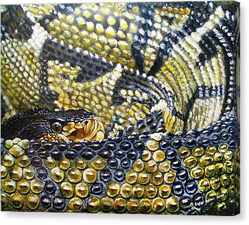Deadly Details Canvas Print by Cara Bevan